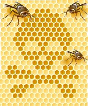 b2ap3_thumbnail_bees.jpg